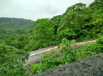 Kanheri environment- 2