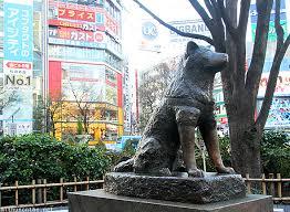Hachiko Statue Shibuya Station
