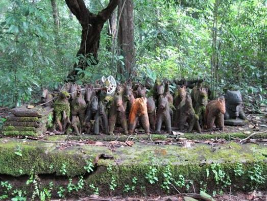 sacred grove goa