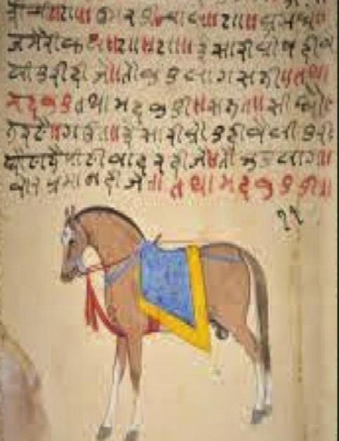 Salihotra Samhita